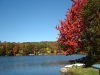 Fall at Lake 1